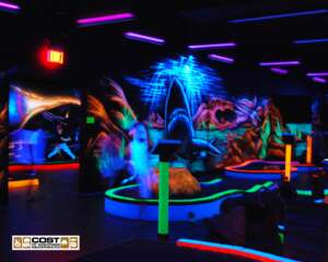 COST BlackLight5